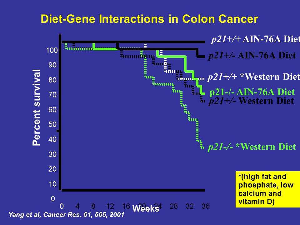 Diet-Gene Interactions in Colon Cancer