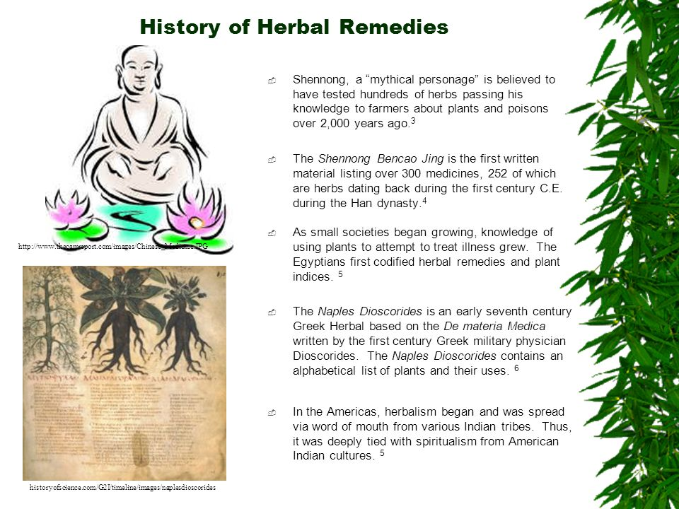 History of Herbal Remedies
