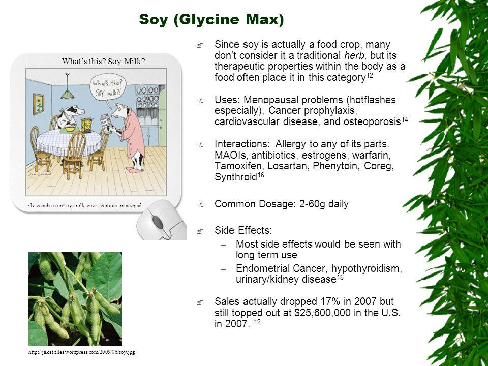 Soy (Glycine Max)