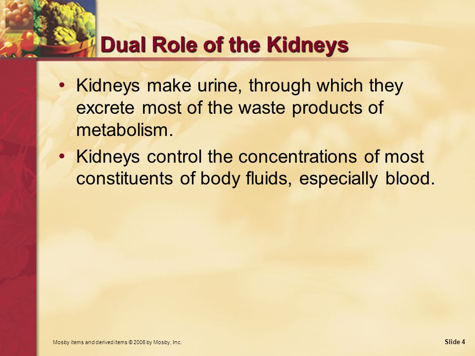 Dual Role of the Kidneys