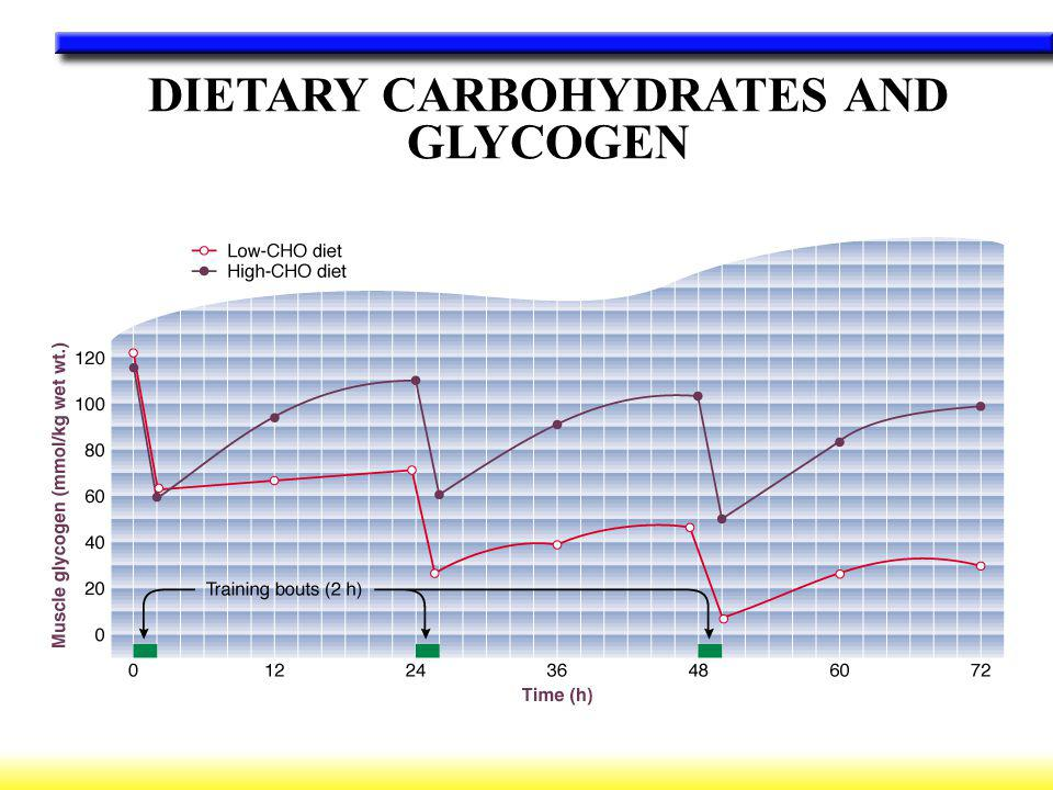 DIETARY CARBOHYDRATES AND GLYCOGEN