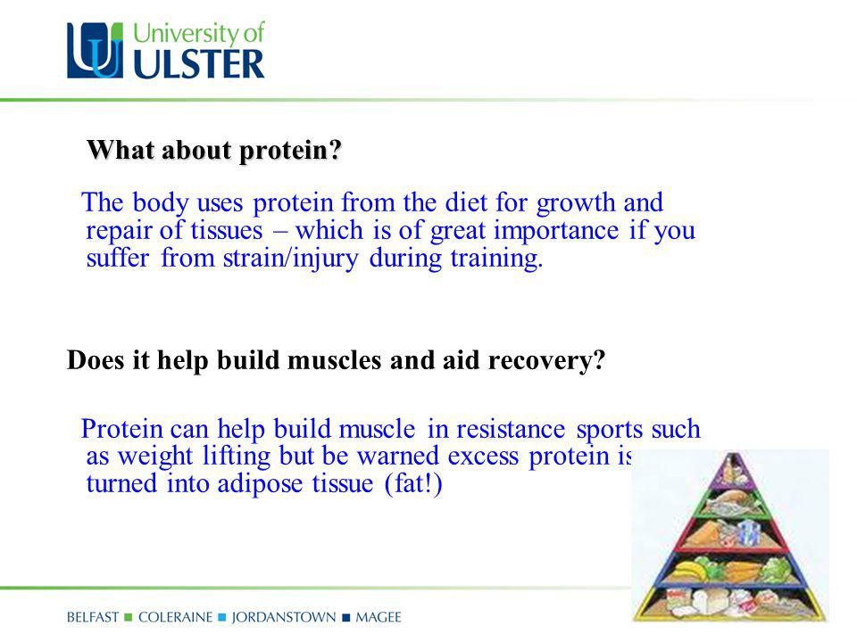 Does it help build muscles and aid recovery