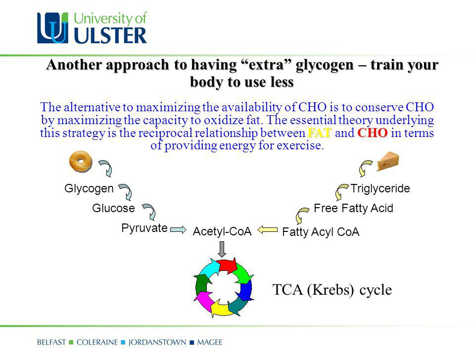 Another approach to having extra glycogen – train your body to use less