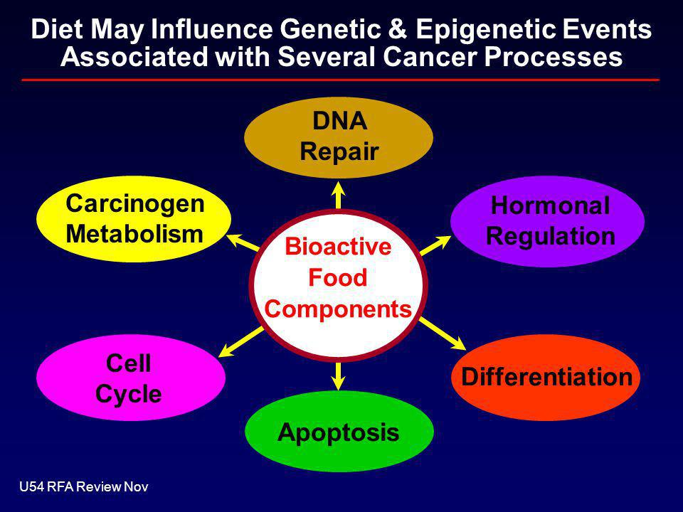 Diet May Influence Genetic & Epigenetic Events Associated with Several Cancer Processes