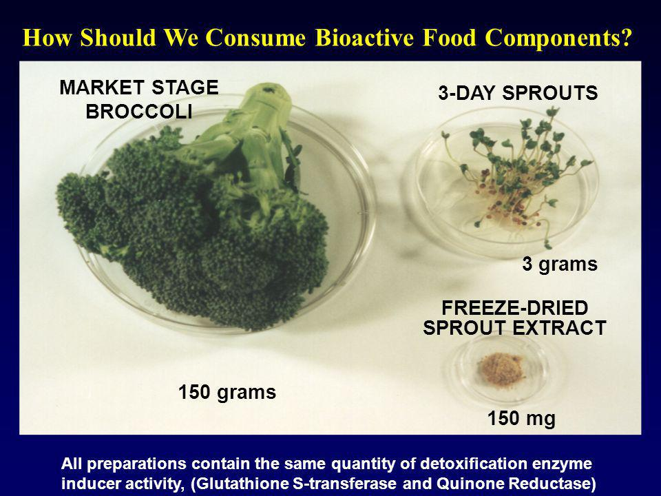 How Should We Consume Bioactive Food Components