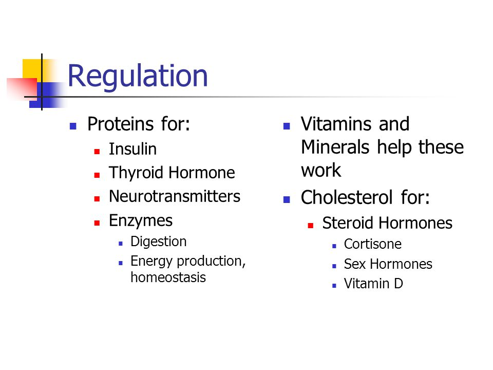 Regulation Proteins for: Vitamins and Minerals help these work