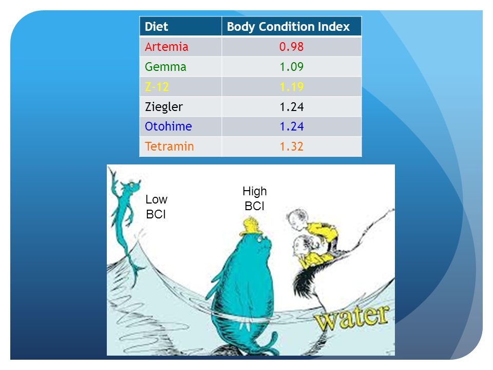 Diet Body Condition Index. Artemia. 0.98. Gemma. 1.09. Z-12. 1.19. Ziegler. 1.24. Otohime.
