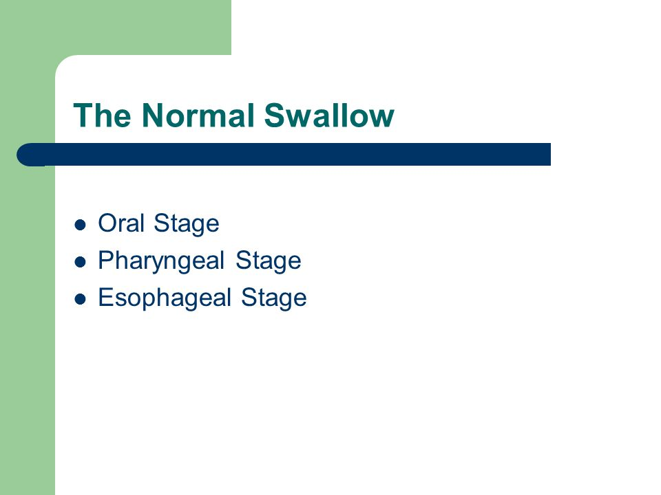 The Normal Swallow Oral Stage Pharyngeal Stage Esophageal Stage