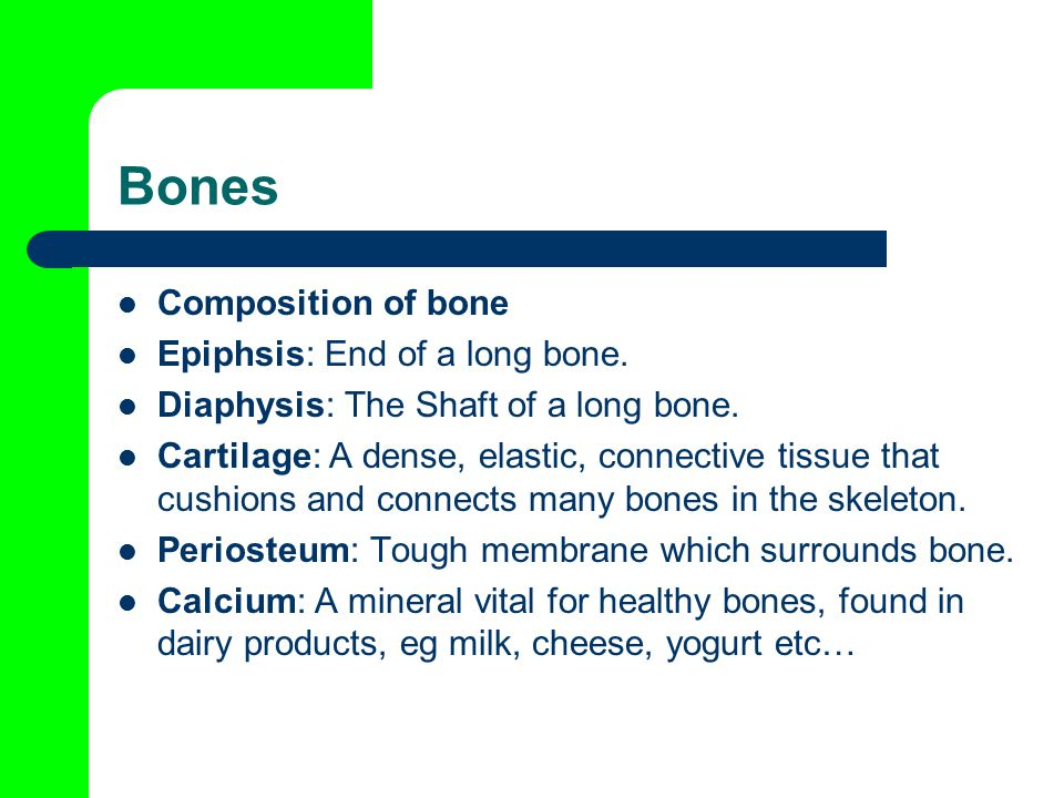 Bones Composition of bone Epiphsis: End of a long bone.