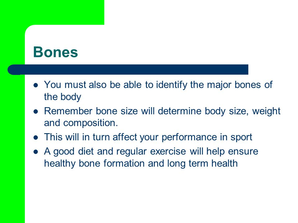 Bones You must also be able to identify the major bones of the body