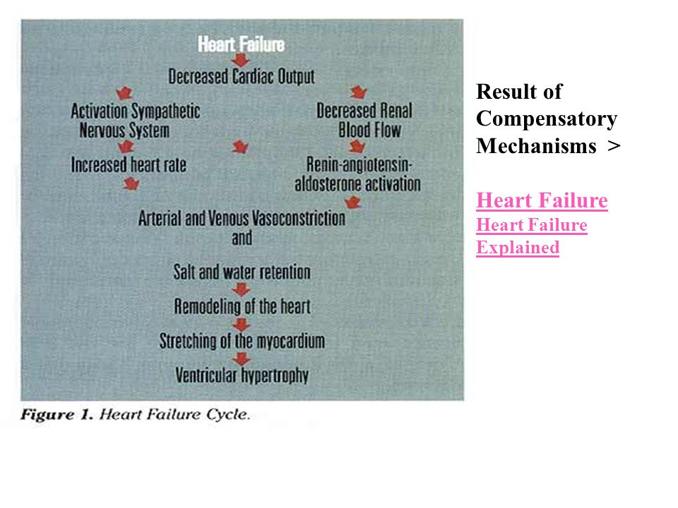Result of Compensatory Mechanisms >