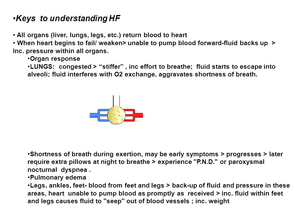 Keys to understanding HF