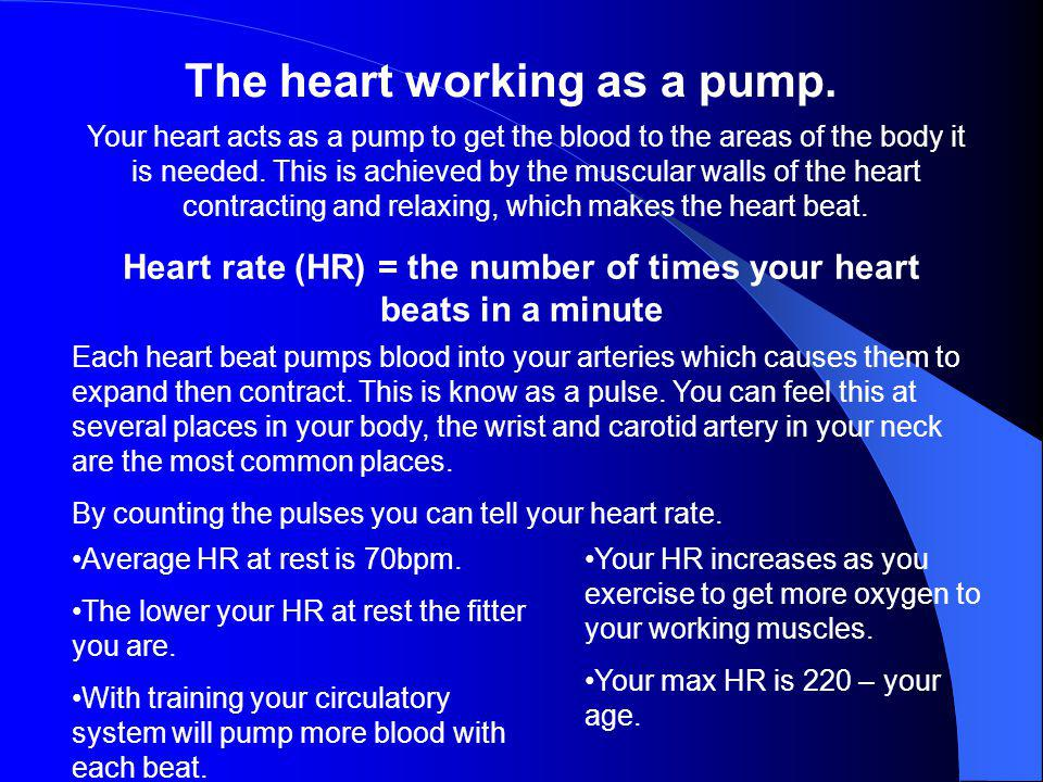Heart rate (HR) = the number of times your heart beats in a minute