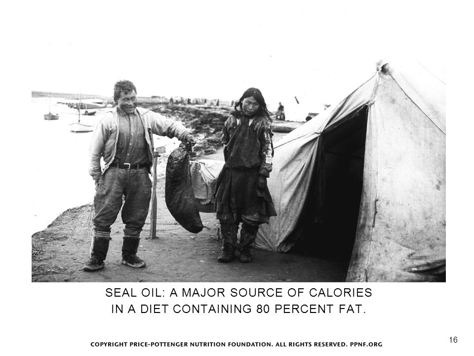 Seal Oil SEAL OIL: A MAJOR SOURCE OF CALORIES