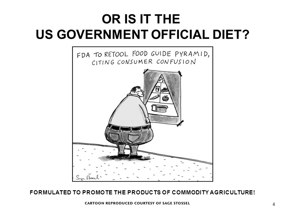 Cartoon OR IS IT THE US GOVERNMENT OFFICIAL DIET