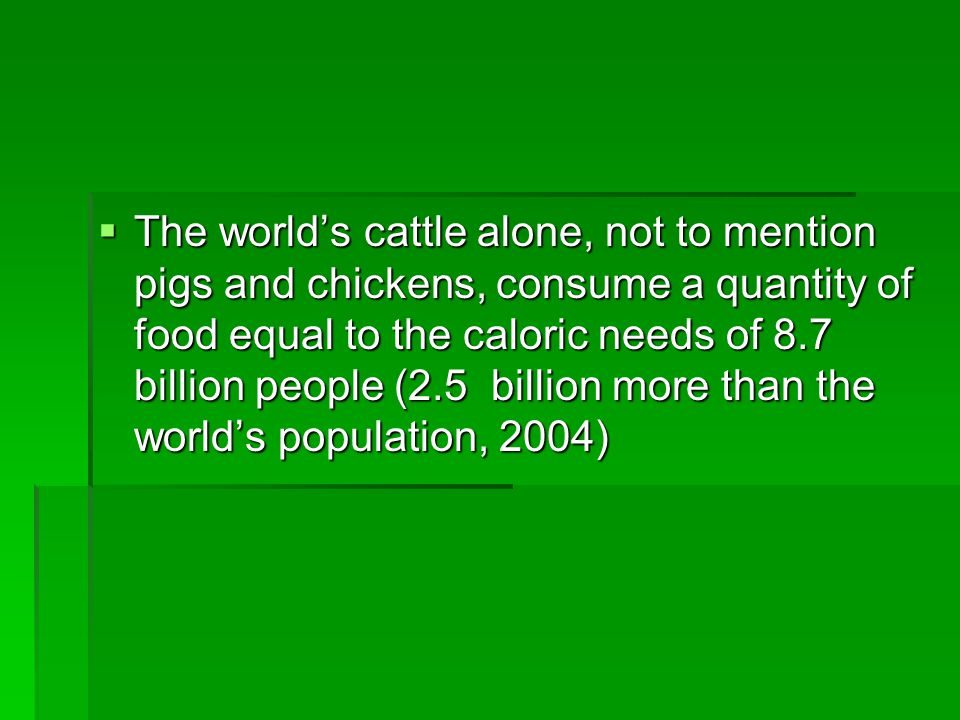 The world's cattle alone, not to mention pigs and chickens, consume a quantity of food equal to the caloric needs of 8.7 billion people (2.5 billion more than the world's population, 2004)