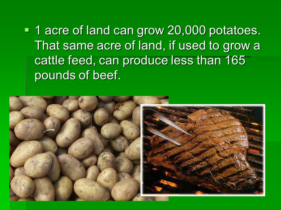 1 acre of land can grow 20,000 potatoes