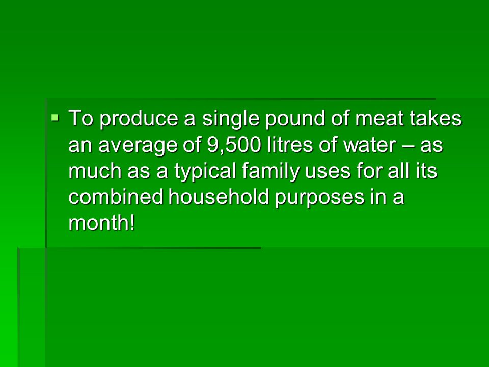 To produce a single pound of meat takes an average of 9,500 litres of water – as much as a typical family uses for all its combined household purposes in a month!