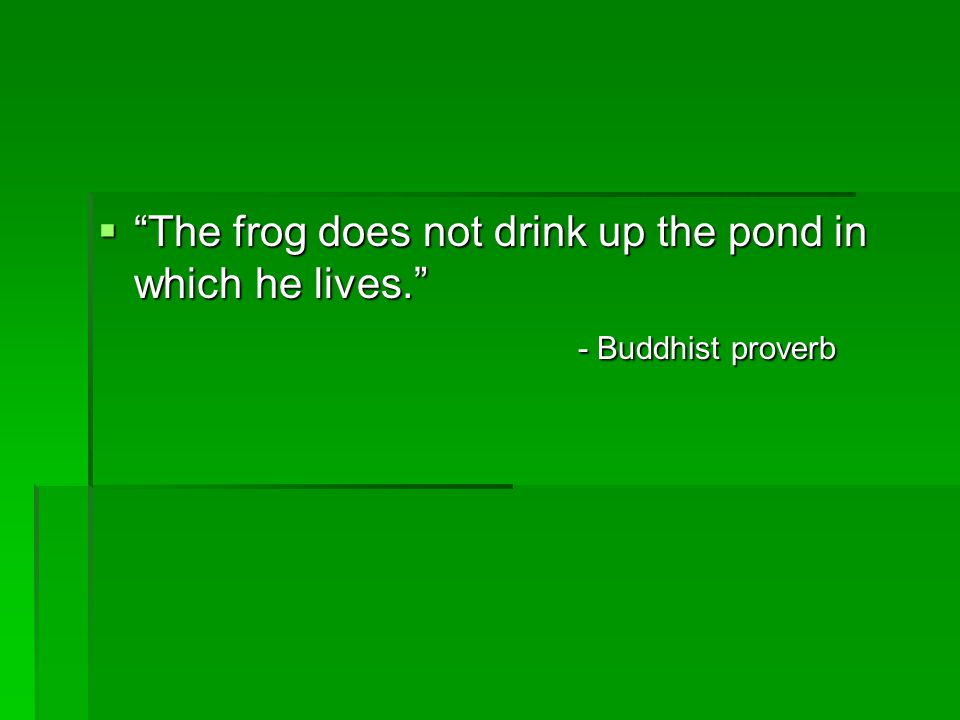 The frog does not drink up the pond in which he lives.