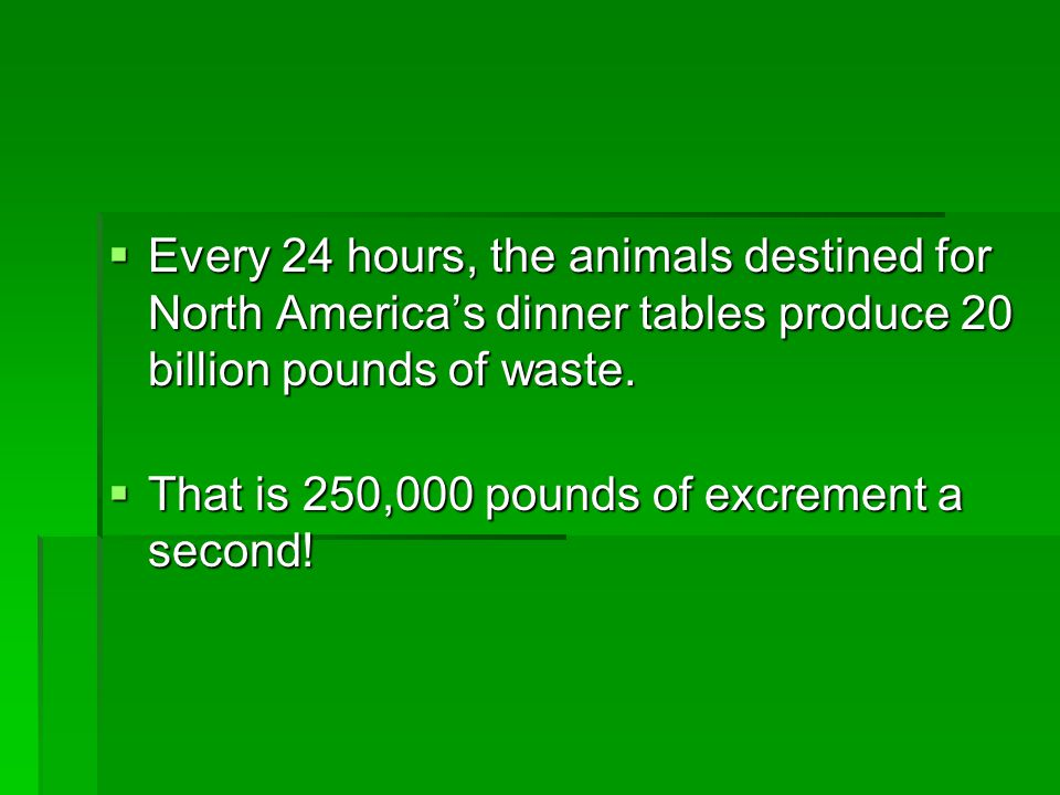 Every 24 hours, the animals destined for North America's dinner tables produce 20 billion pounds of waste.