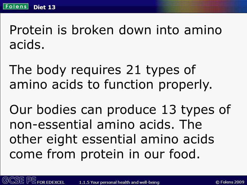 Protein is broken down into amino acids.