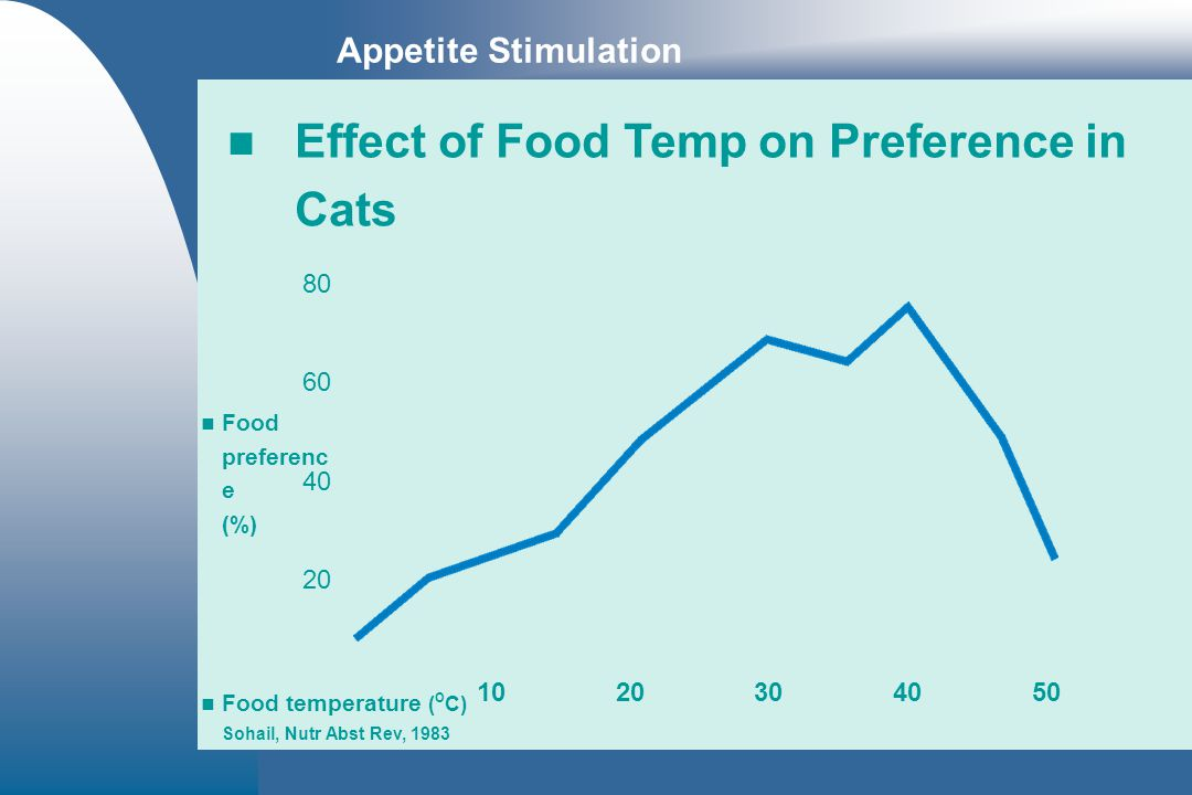 Effect of Food Temp on Preference in Cats