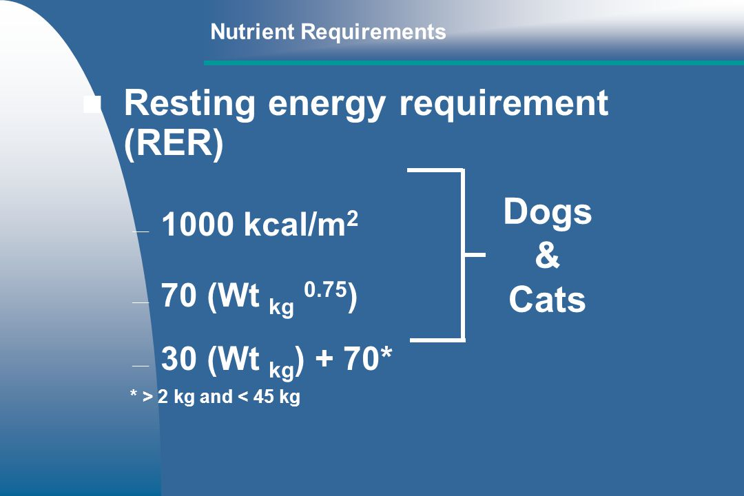 Resting energy requirement (RER)