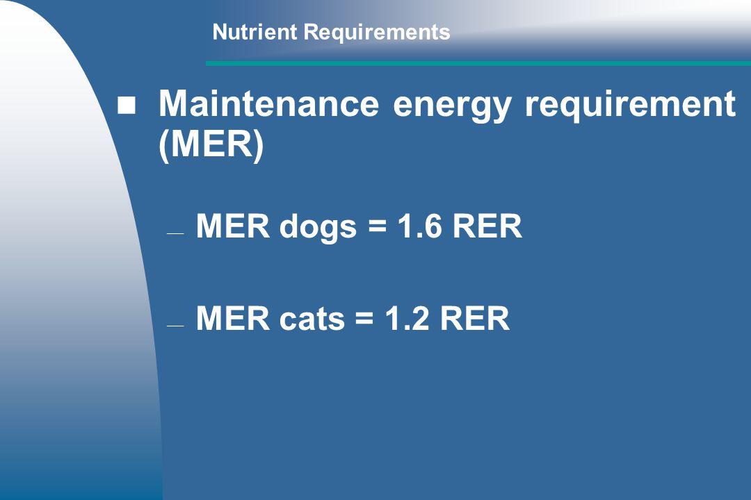 Maintenance energy requirement (MER)