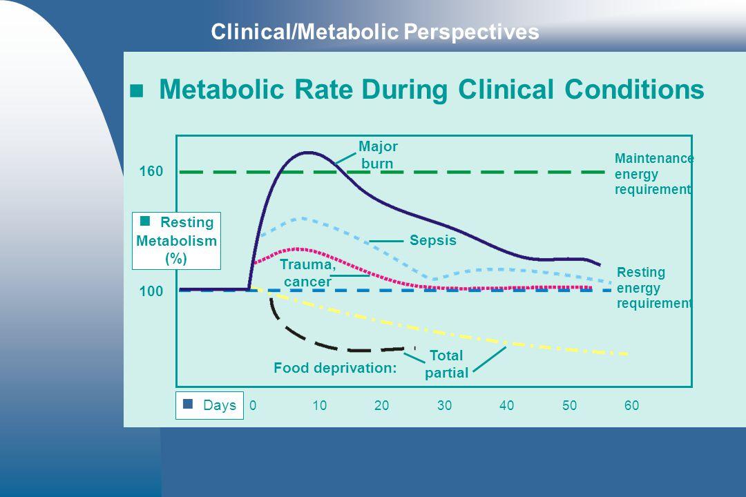 Resting Metabolism (%)