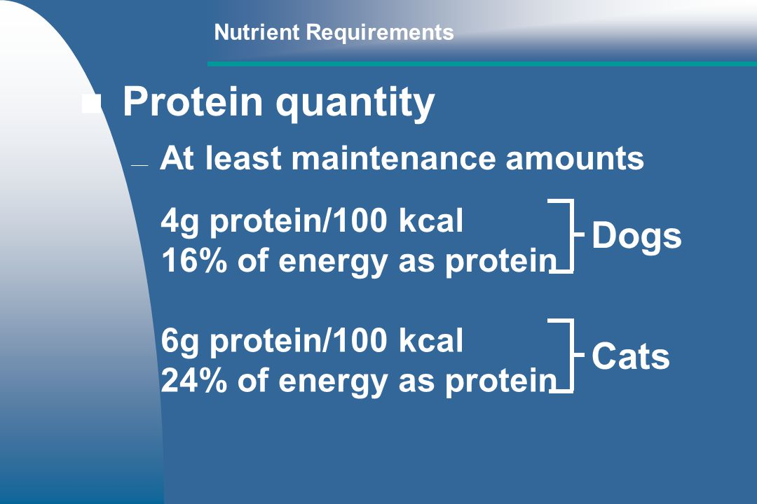 Protein quantity Dogs Cats At least maintenance amounts
