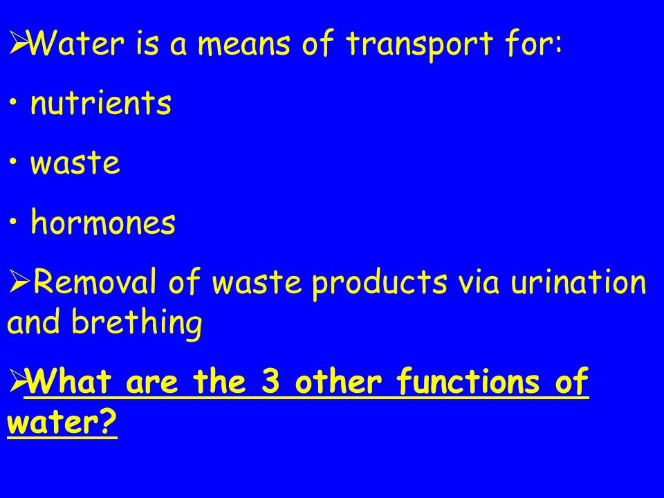 Water is a means of transport for: