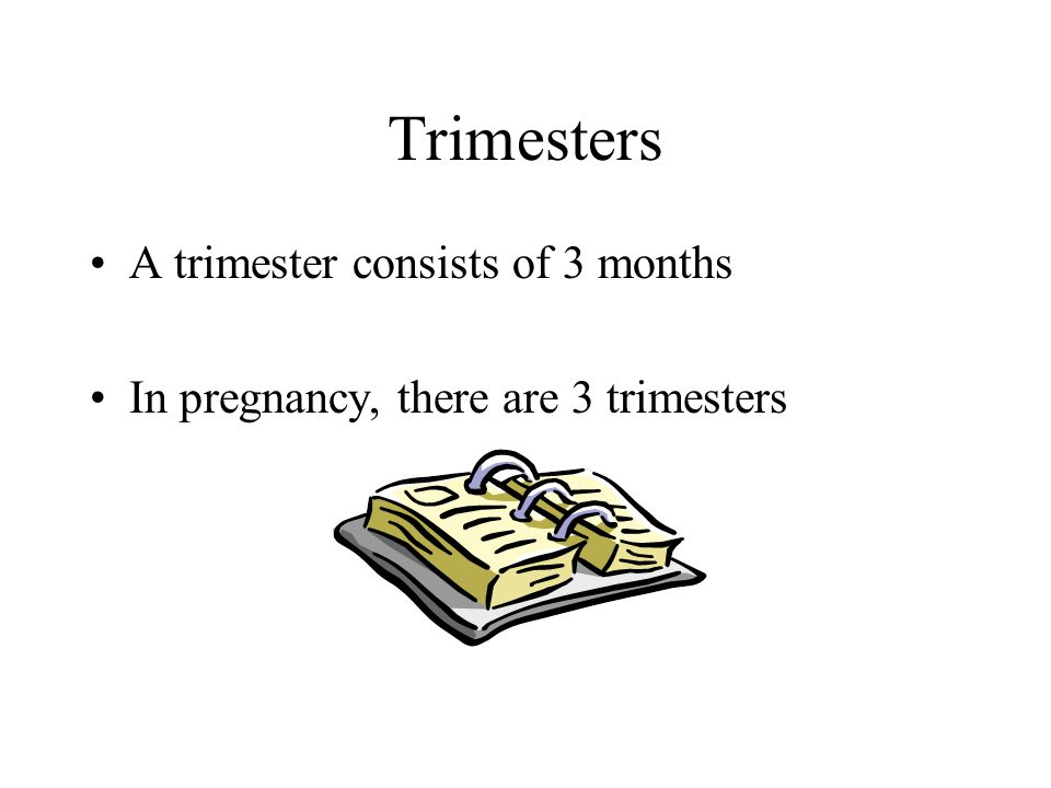 Trimesters A trimester consists of 3 months