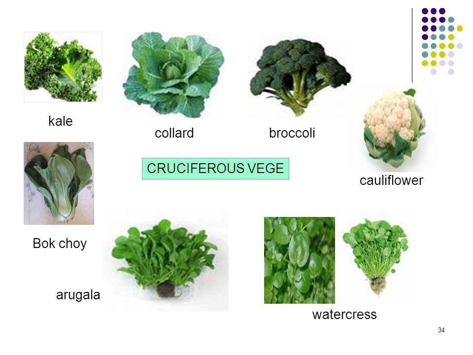 kale collard broccoli CRUCIFEROUS VEGE cauliflower Bok choy arugala watercress