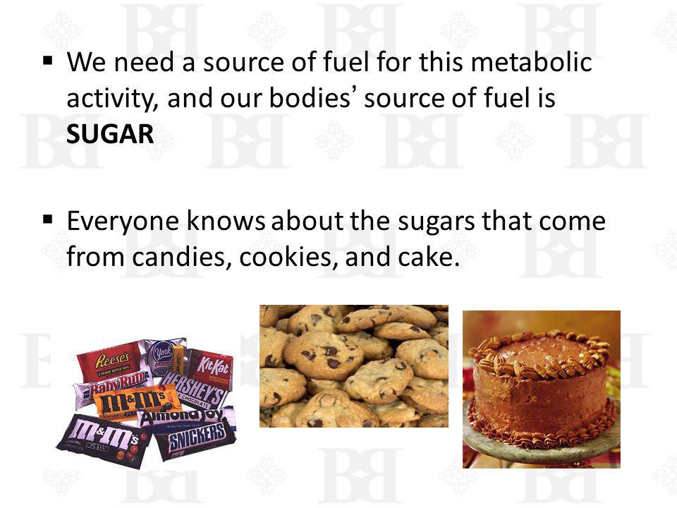 We need a source of fuel for this metabolic activity, and our bodies' source of fuel is SUGAR
