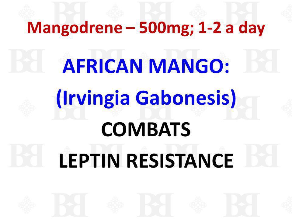 AFRICAN MANGO: (Irvingia Gabonesis) COMBATS LEPTIN RESISTANCE