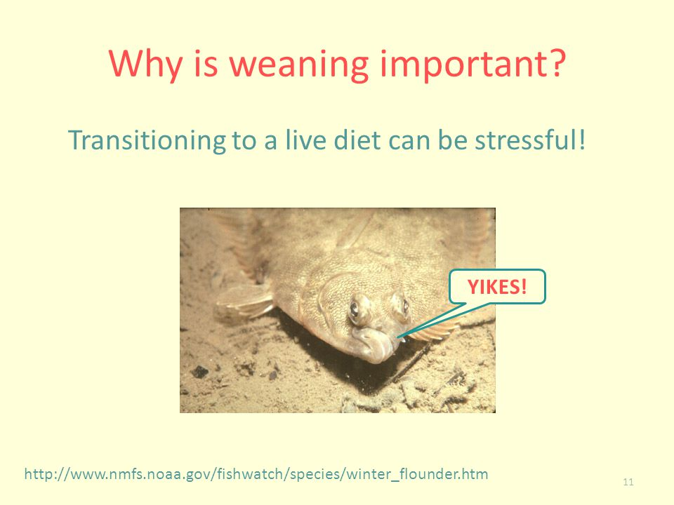 Why is weaning important