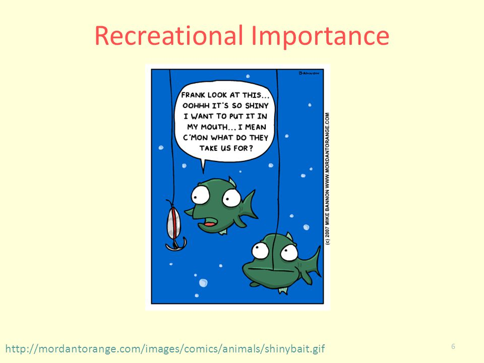 Recreational Importance
