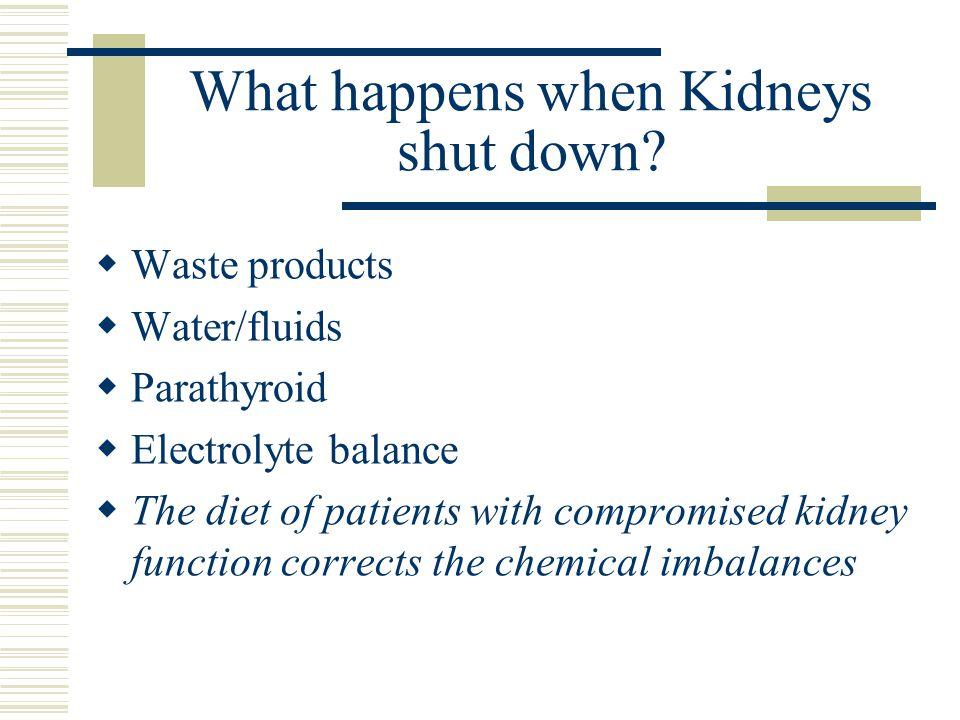 What happens when Kidneys shut down