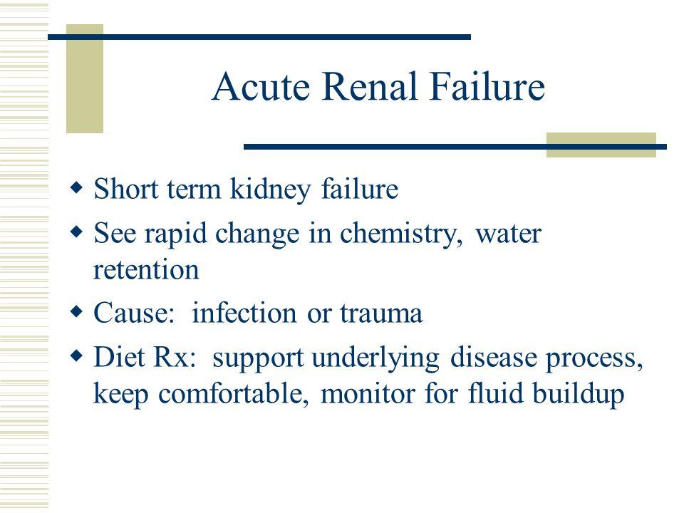 Acute Renal Failure Short term kidney failure