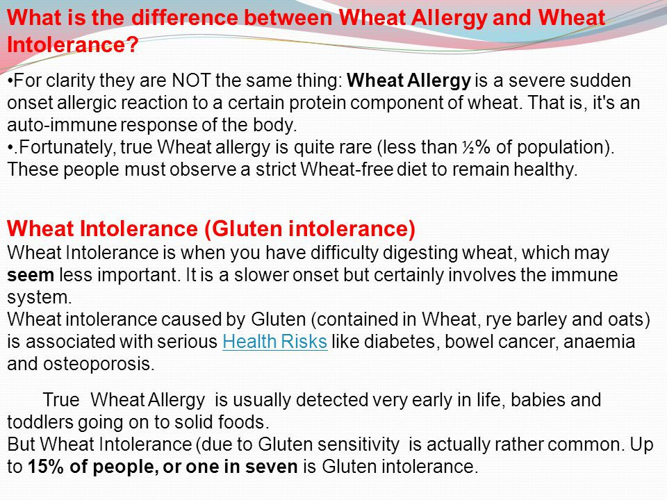 What is the difference between Wheat Allergy and Wheat Intolerance