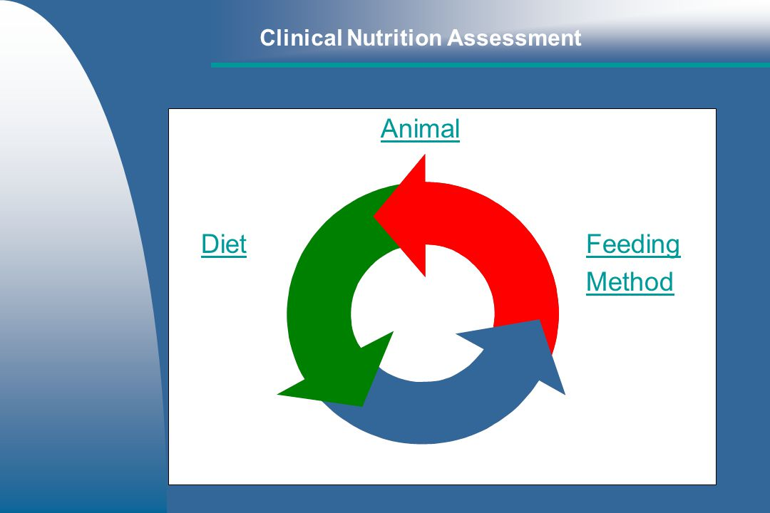Clinical Nutrition Assessment