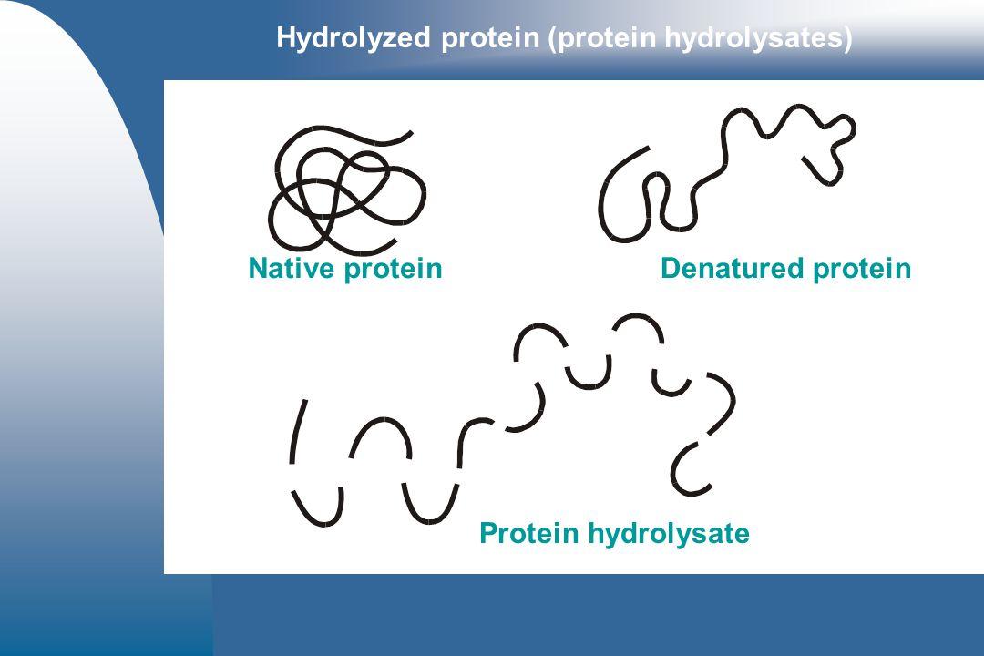 Hydrolyzed protein (protein hydrolysates)