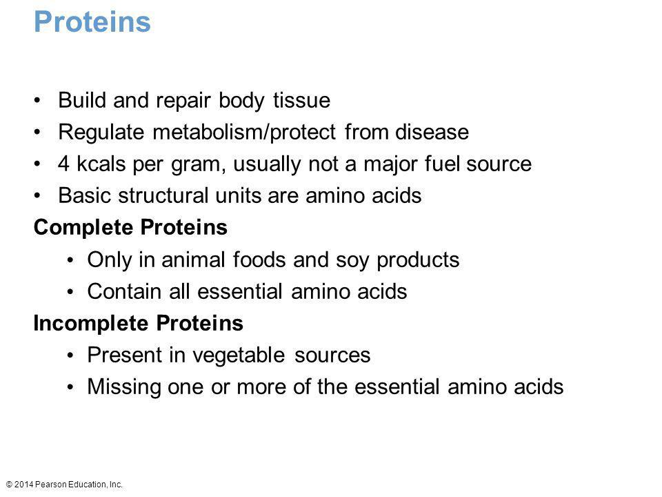 Proteins Build and repair body tissue