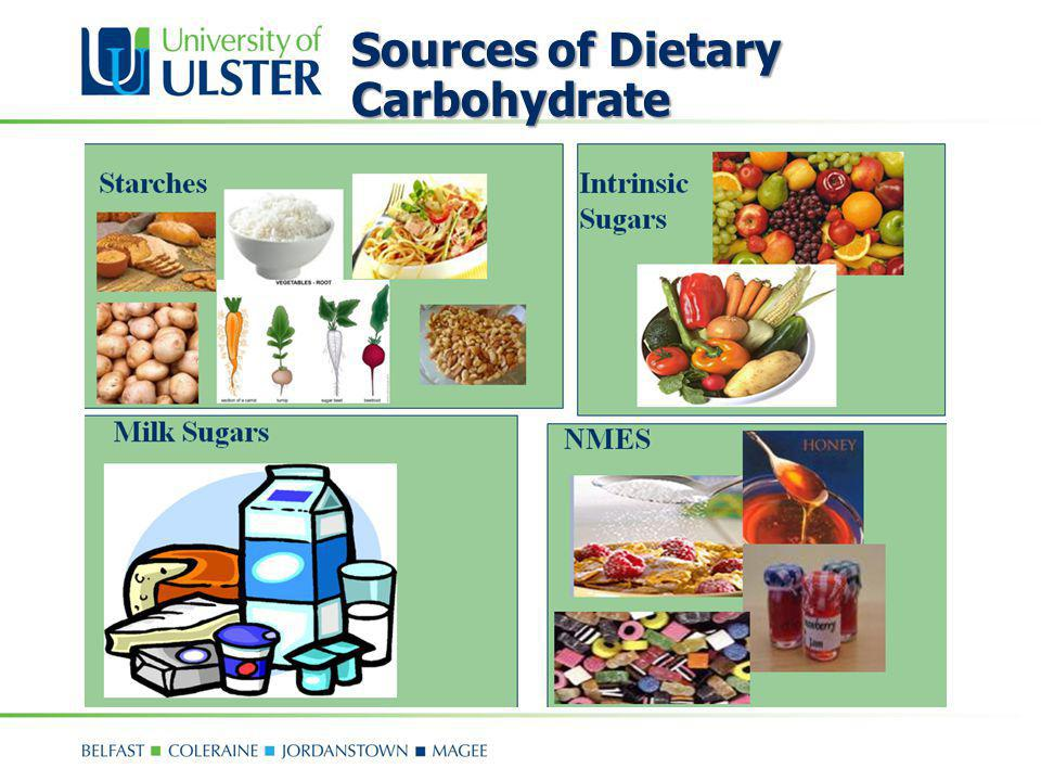 Sources of Dietary Carbohydrate