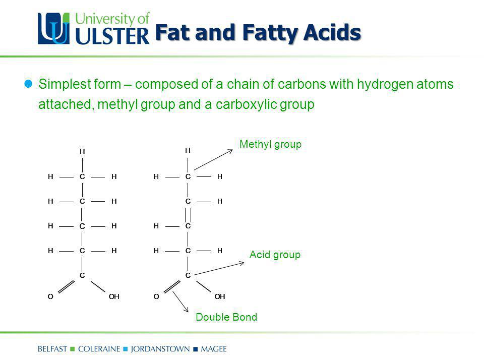 Fat and Fatty Acids Simplest form – composed of a chain of carbons with hydrogen atoms attached, methyl group and a carboxylic group.
