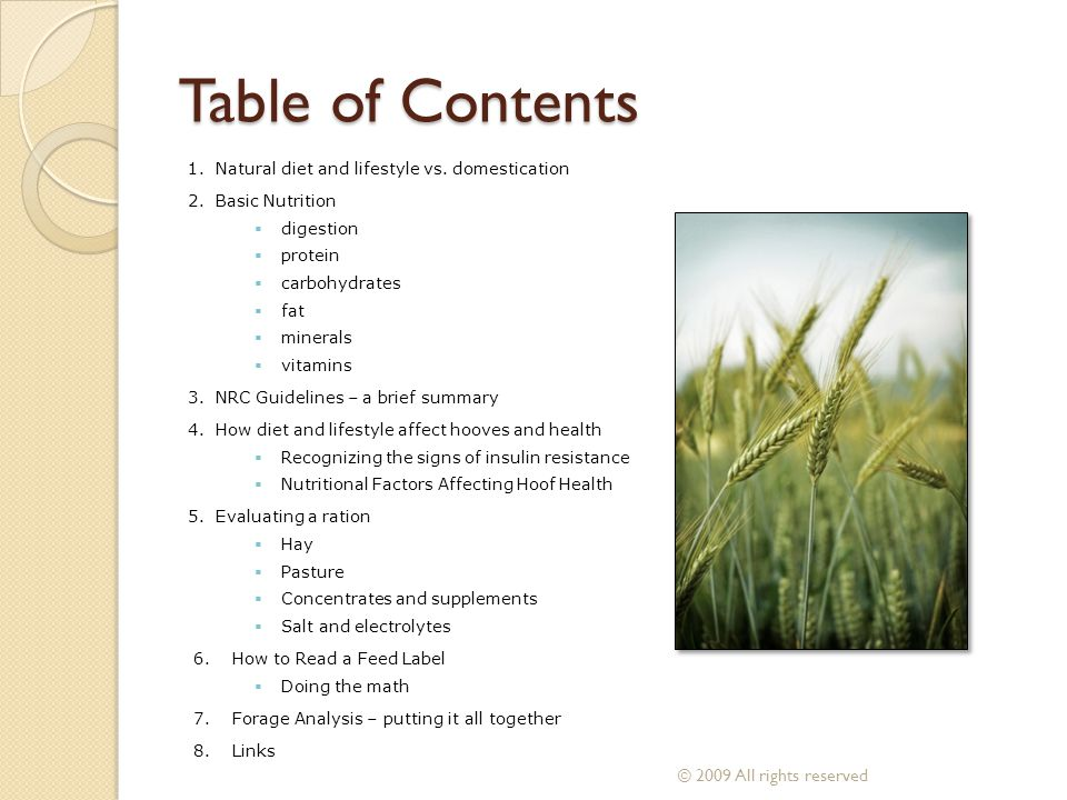 Table of Contents © 2009 All rights reserved