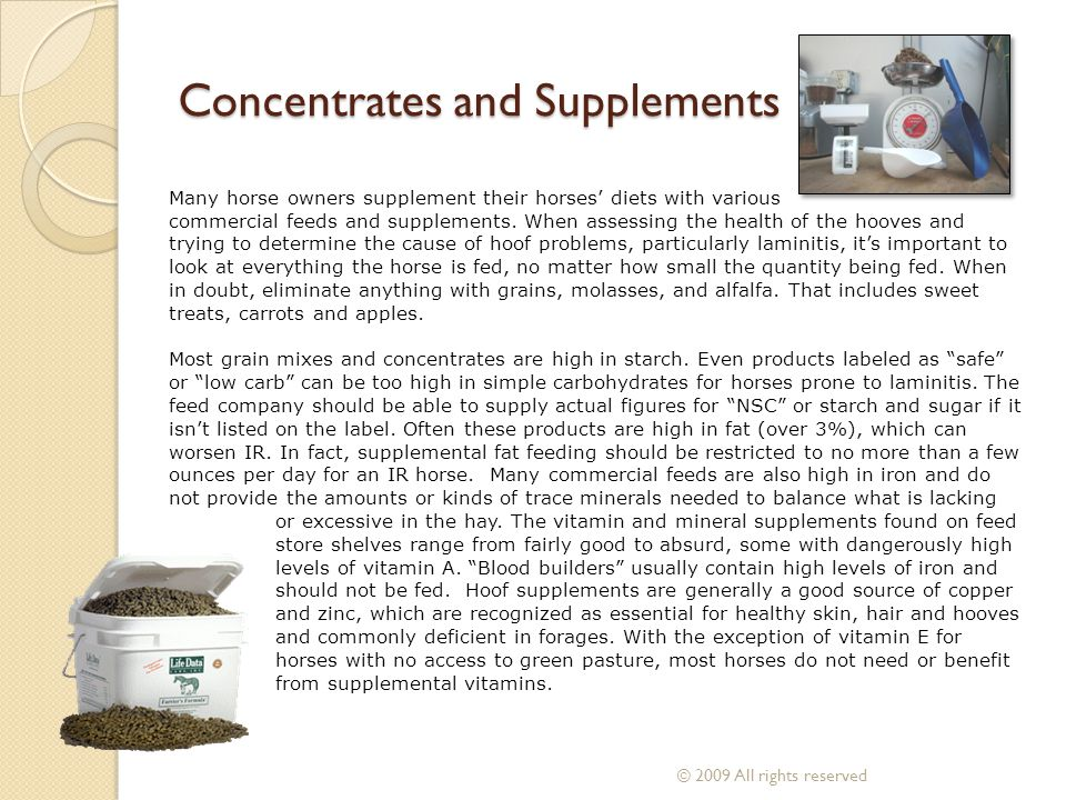 Concentrates and Supplements