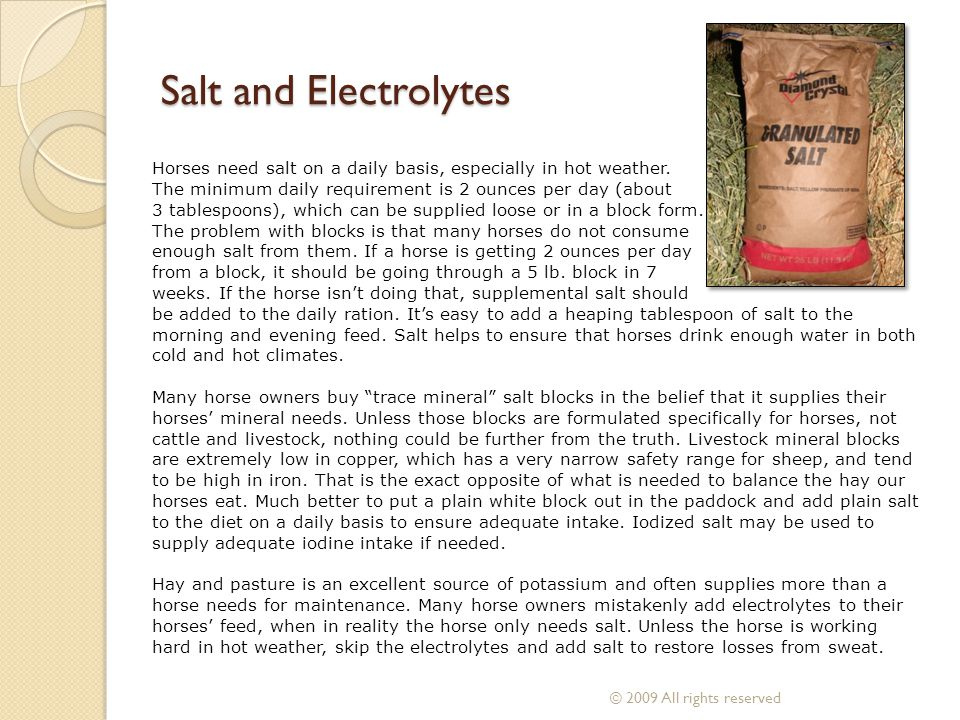Salt and Electrolytes Horses need salt on a daily basis, especially in hot weather. The minimum daily requirement is 2 ounces per day (about.