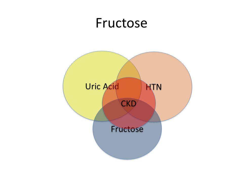 Fructose Uric Acid HTN CKD Fructose