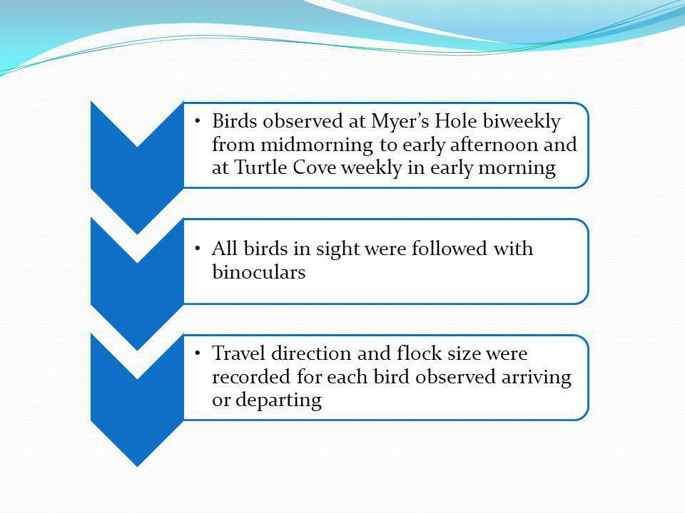 Birds observed at Myer's Hole biweekly from midmorning to early afternoon and at Turtle Cove weekly in early morning